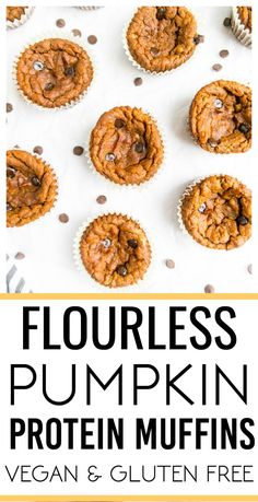 Flourless Pumpkin Protein Muffins Flourless Pumpkin Protein Muffins The Glowing Fridge<br> Flourless Pumpkin Protein Muffins. Vegan and Gluten Free! Delicious, one bowl pumpkin muffins, ready in 35 minutes! Pumpkin Protein Muffins, Vegan Muffins, Flourless Muffins, Clean Eating Pumpkin Muffins, Vegan Pancakes, Vegan Pumpkin, Gluten Free Pumpkin, Pumpkin Pumpkin, Pumpkin Dessert