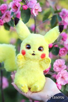 Pikachu Cat, Pikachu Drawing, Cute Pikachu, Cute Pokemon, Cute Stuffed Animals, Cute Baby Animals, Cute Romantic Quotes, Romantic Video, Anime Wolf Drawing