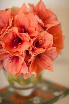 Cuadro Peach Bouquet