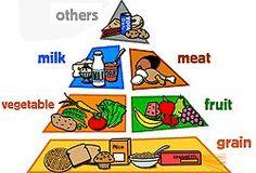 10 Best Food Pyramid Project Images Food Pyramid Food Pyramid Kids Pyramids