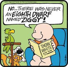 Ziggy  (Feb/20/2015)