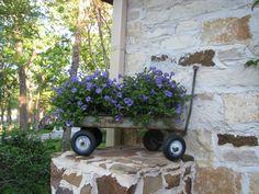 An antique wagon makes a cute planter box!...wish I still had my old wagon