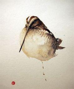 Snipe - Karl Mårtens - watercolor