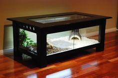 DIY Reptile Enclosure Coffee Table