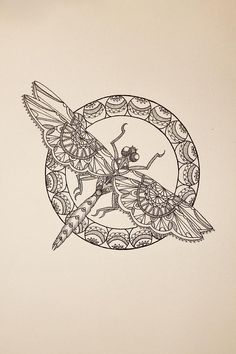 Dragonfly Paintings | Dragonfly II Drawing by Jodi Harvey-Brown - Lace Dragonfly II Fine Art ...