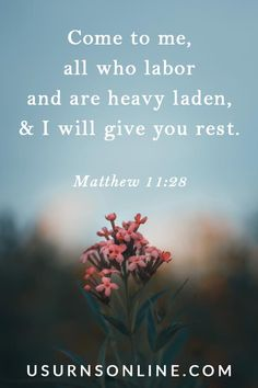 Matthew 11:28 is definitely one of the most popular Scripture readings for funerals, if not THE most popular (Psalm 23 is another one). See our article for many more Bible verse selections ideal for a Christian's funeral, memorial service, or celebration of life. Bible Verses For Funerals, Funeral Readings, Comforting Bible Verses, Matthew 11 28, Funeral Memorial, Scripture Reading, Psalm 23, The Selection, Memories