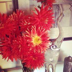 """WEBSTA @ sofil88 - """"Que flores são estas?"""" """"São dálias""""E andei eu este tempo todo a chamar-lhes sandálias, a achar que era o nome delas 😑 (Não é verdade mas podia ser 😂)•#crazy #sonodánisto #truestory #ornot #podiadarparapior #flowers #dalias #flores #autumn #outono #fall #october #outubro #orange #laranja #iloveflowers #instadecor #decoration #decoração #likeforlike #like4like"""