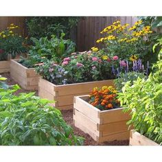 Raised Garden Beds - Cedar Wood - Easy, Tool-free Assembly | ThisNext