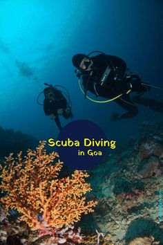 Experience Scuba Diving at Grand Island in Goa Grand Island, Desert Island, Diving Lessons, Dolphin Tours, Destinations, Caribbean Culture, Island Tour, Adventure Activities, Snorkelling