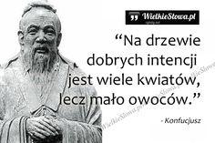 Na drzewie dobrych intencji... #Konfucjusz,  #Motywujące-i-inspirujące, #Życie