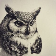 Owl tattoo, realistic, black and white Owl tattoo, realistic, black and white