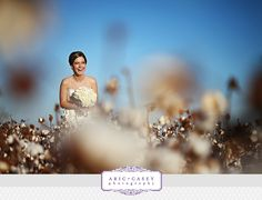 bridal portrait in cotton field by aricandcasey photogrpahy