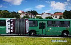 Accordion Bus Music Advertisement