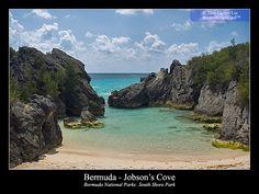 Jobson Cove, Bermuda ~ The family plot! :D