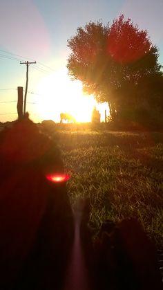 Sunset Mirassol Farm - Foto KP