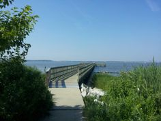 Holts Landing State Park is a 203-acre Delaware state park northwest of Bethany Beach, Sussex County, Delaware in the United States.