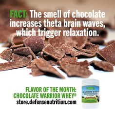 FACT: The cacao bean contains almost 300 different flavors and 400 separate aromas. Food Technology, Protein Foods, Whey Protein, Cacao Beans, Theobroma Cacao, How To Make Chocolate, Delicious Chocolate, Health Diet, Whole Food Recipes