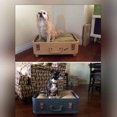 Vintage suitcase dog bed conversion - original redesign