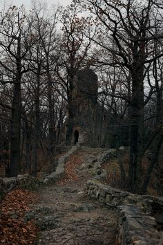There is a forest in Southern Poland, with some spooky ruins situated on a hill. It's hard to find, it's quite hard to get there. Here it is...