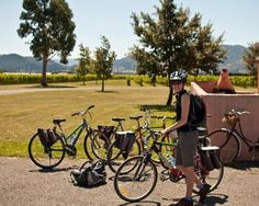Visitors on bikes at Cellar Door