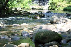 Landscape of rocks & streams in Gatlinburg, TN
