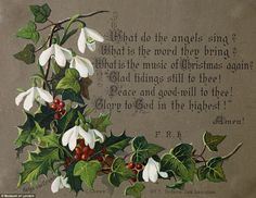 The holly and the ivy: Victorian Christmas card showing a collection of seasonal leaves and berries