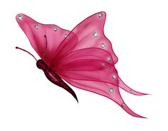 butterfly png | Butterfly4.png Photo by just4udesigns | Photobucket