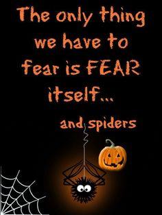 Halloween Words, Halloween 2018, Halloween Crafts, Halloween Ideas, Wallpaper Backgrounds, Phone Wallpapers, Pure Romance, Halloween Wallpaper, Fall Decor