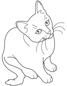 Realistic Cat Coloring Pages Picture Hd For Kids