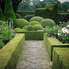 The Daily Blooms ( Gravel Path, Topiary, Garden Styles, Hedges, Garden Paths, Garden Inspiration, Perennials, Vineyard, Sidewalk