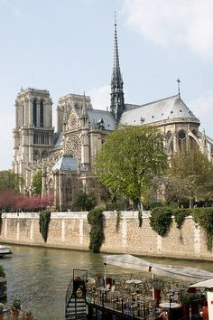 Notre Dame de Paris. . .I attended a service and climbed to the top and posed with a gargoyle.