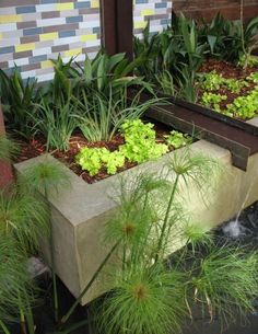 cascade de jardin en acier et béton et mur en mosaïque décorative
