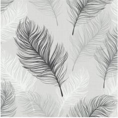 Arthouse Whisper Black &Amp; White Wallpaper ($19) ❤ liked on Polyvore featuring home, home decor, wallpaper, feather wallpaper, contemporary wallpaper, white home accessories, black wallpaper and textured wallpaper