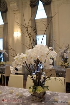 Winter Centerpiece with White Orchids - Ace Cuervo Photography