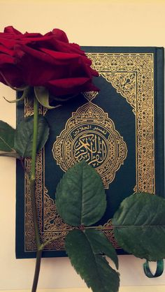 Need this 1 Islamic Wallpaper Iphone, Quran Wallpaper, Mecca Wallpaper, Islamic Quotes Wallpaper, Islamic Images, Islamic Pictures, Photos Islamiques, Mekka Islam, Motifs Islamiques