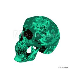 Human skull illustration isolated on white background - Buy this stock illustration and explore similar illustrations at Adobe Stock | Adobe Stock Skull Illustration, Human Skull, Adobe, Illustrations, Stock Photos, Explore, Stuff To Buy, Fictional Characters, Image