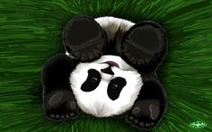Yaaayy for cute pandas! Christmas pandas are here; Panda Funny, Cartoon Panda, Cute Panda, Christmas Panda, Christmas Hat, Pet Paradise, Panda Art, Tatty Teddy, Pretty Pictures