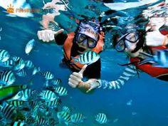 Serunya Main Water Sport di Tanjung Benoa