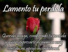 Condolences Quotes, Sympathy Quotes, Good Morning Prayer, Morning Prayers, Get Well Soon Messages, Prayer For My Son, Condolence Messages, Miss You Mom, Quotes En Espanol