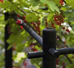Stöd för bärbuskar - buskstöd - buskar - bärbuskar - bär - trädgård