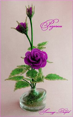 розы от Саши - авс