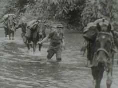 Merrill's Marauders --actual film footage, 1944, North Burma