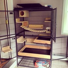 Beautiful two level chinchilla cage setup with lots of wooden ledges and hideouts.