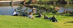 Parque do Japão, Maringá, Paraná. #Brasil