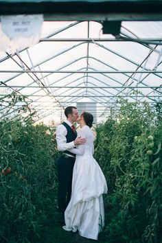 Green house wedding kiss photographed by #annicee #weddingphotography #farmwedding #goinggreen