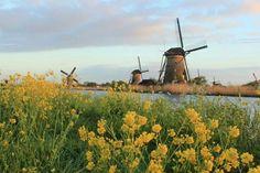Holland, Kinderdijk Photography by: M. van Rongen