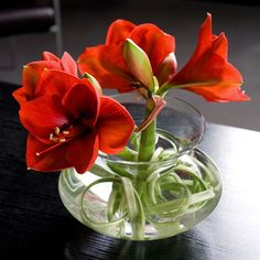 bloemstuk glas in glas met hortensia en dahlia 39 s. Black Bedroom Furniture Sets. Home Design Ideas