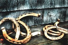 lucky horseshoes.