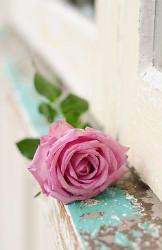 """Imagens que falam...Textos que calam...: """" Desejo que encontre maneiras para se fazer feliz no intervalo entre o instante em que cada dia acorda e o instante em que ele se deita pra dormir. Que se sinta livre e louco o bastante pra deixar a sua essência florir. """""""