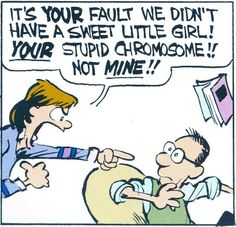 Calvin and Hobbes (DA) - It's YOUR fault we didn't have a sweet little girl! YOUR stupid chromosome!! Not MINE!!